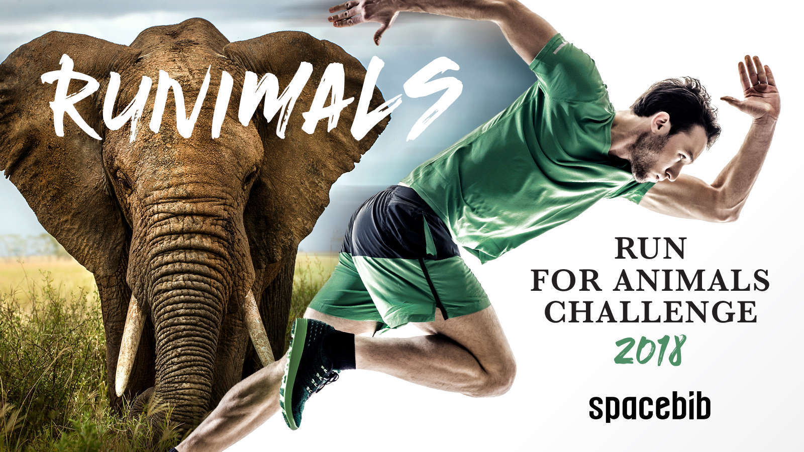 ACRES: Animal Concerns Research And Education Society (Singapore)